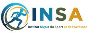 Logo INSA Nice
